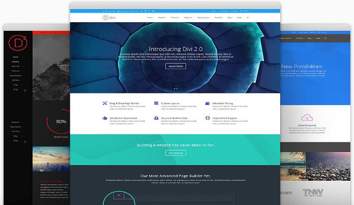 Divi Elegant theme: un tema WordPress da urlo!