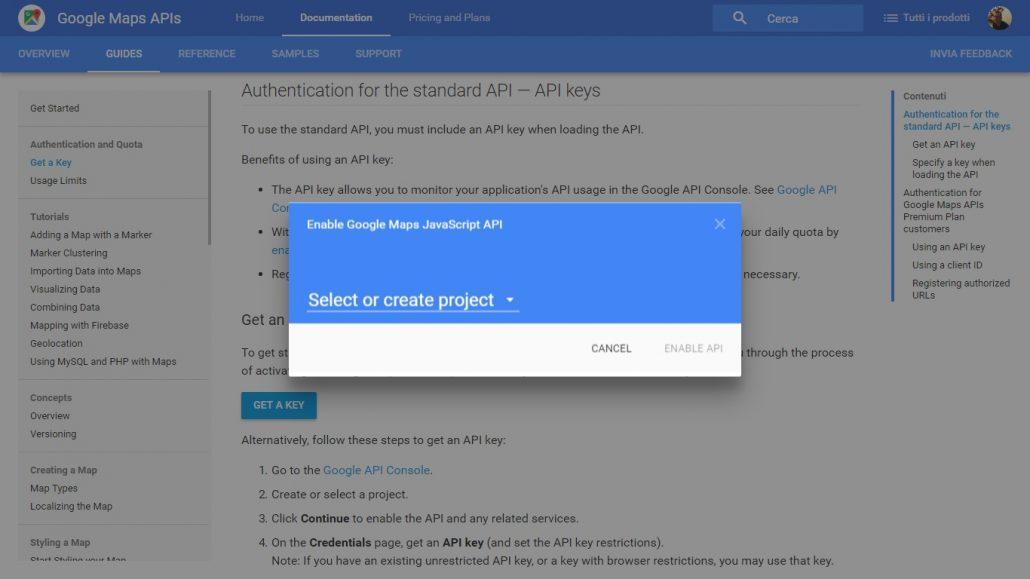 enable google maps javascript API